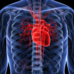 Alimente care îți îmbolnăvesc inima