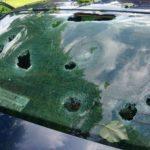 Peste 1.000 daune auto avizate, dupa ce masinile au fost afectate de grindina