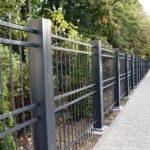 Gard nou la Grădina Romei (Foto)