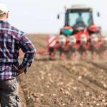 Asigurarea culturilor agricole pentru calamitati. Prevederile au intrat în vigoare