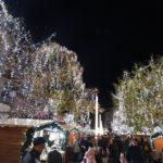 Feerie de lumini la Satu Mare ! A fost pornit iluminatul festiv de sărbători (Foto)