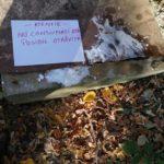 Panica într-o localitate din Satu Mare. Substanta necunoscuta, aruncata într-o fantana publica (Foto)