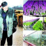 El este cel mai bătrân florar din Romania ! Are 91 de ani !