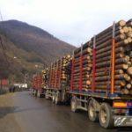Camioane incarcate cu lemne, oprite in trafic