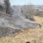 Incendiu de vegetatie uscata. 6 hectare distruse (Foto)