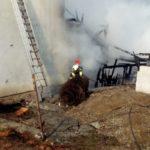 Incendiu pornit de la afumatoare ! Flacarile au distrus un atelier, lemnaria și casa ! (Foto)