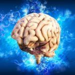 """Vitamina care iti """"intareste"""" creierul !"""