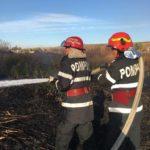 Zeci de hectare de vegetatie uscata, distruse de flacari