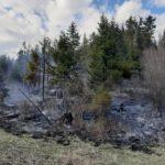 Incendiu lichidat. 4 hectare distruse (Foto)