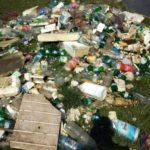 Gramezi de gunoaie adunate de pe Somesul Mic (Foto)