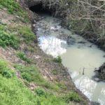 Izvor de infectie in mijlocul Aradului (Foto)