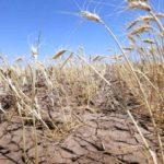 Urmeaza o perioada de seceta