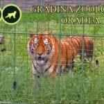 Grădina Zoologică din Oradea își redeschide porțile