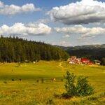 Soveja – staţiunea cu cel mai ozonat aer din Europa